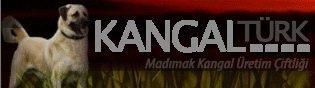 Kangaltürk Kangal Köpeği Üretim Çiftliği